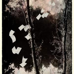 Gérard Bertrand    à Nov'Art  la série Entre chien et loup