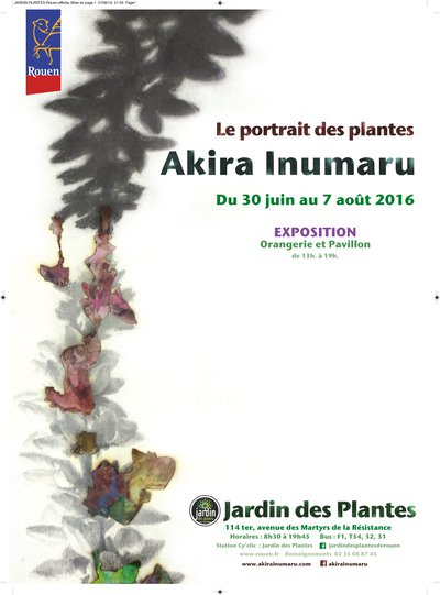 exposition le portrait des plantes d 39 akira inumaru orangerie du jardin des plantes rouen. Black Bedroom Furniture Sets. Home Design Ideas