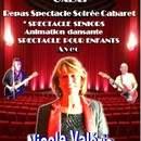 Nicole Valérie Artiste Landaise - Galas de Variétés: SPECTACLE 100%CHANSONS FRANCAISES