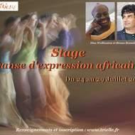 ELSA WOLLIASTON ET BRUNO BESNAÏNOU Danse d'expression africaine