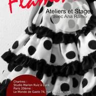 Stages de flamenco avec Ana Ramo